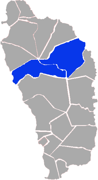 2010 By Election Results